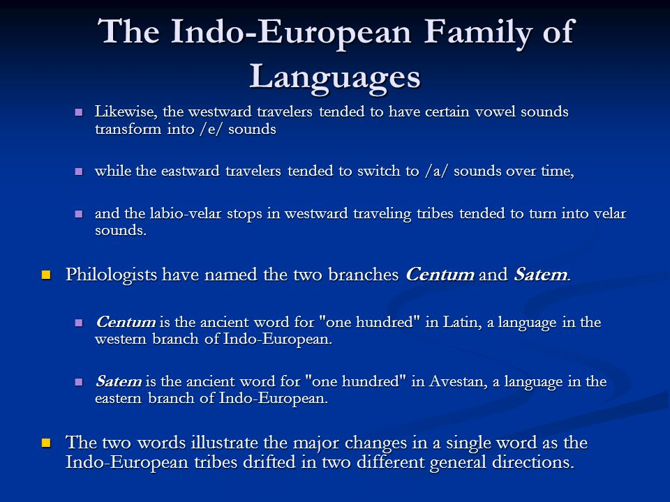 Indo european family of languages essay help