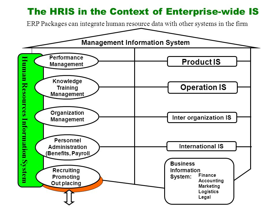 the hris in the context of enterprise wide is