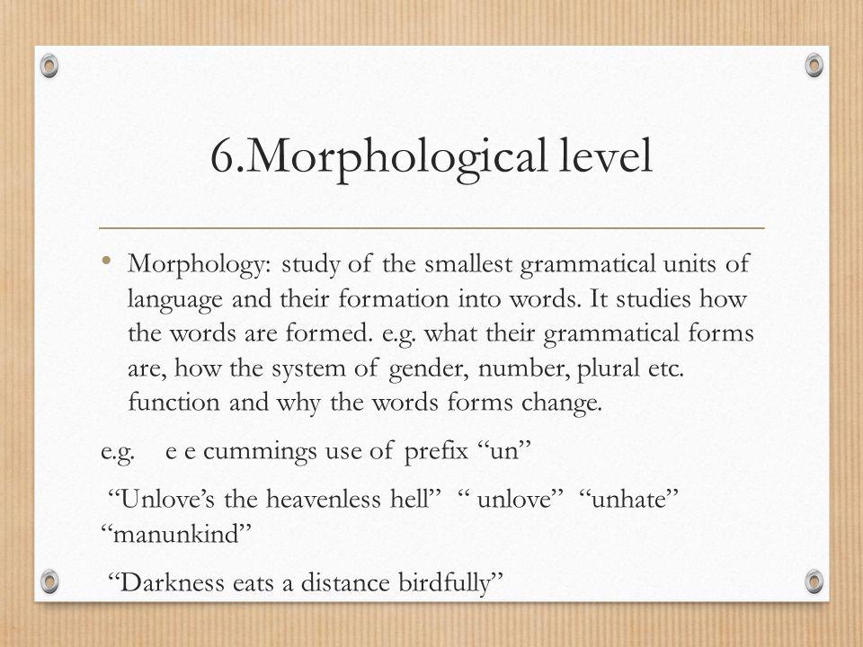 6.Morphological level