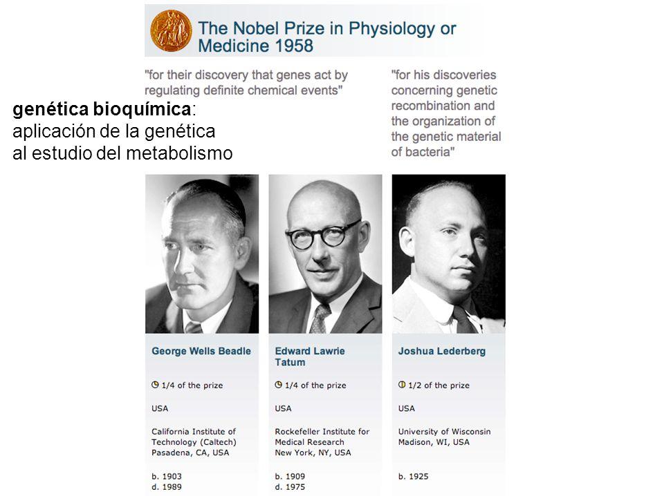 aplicación de la genética al estudio del metabolismo