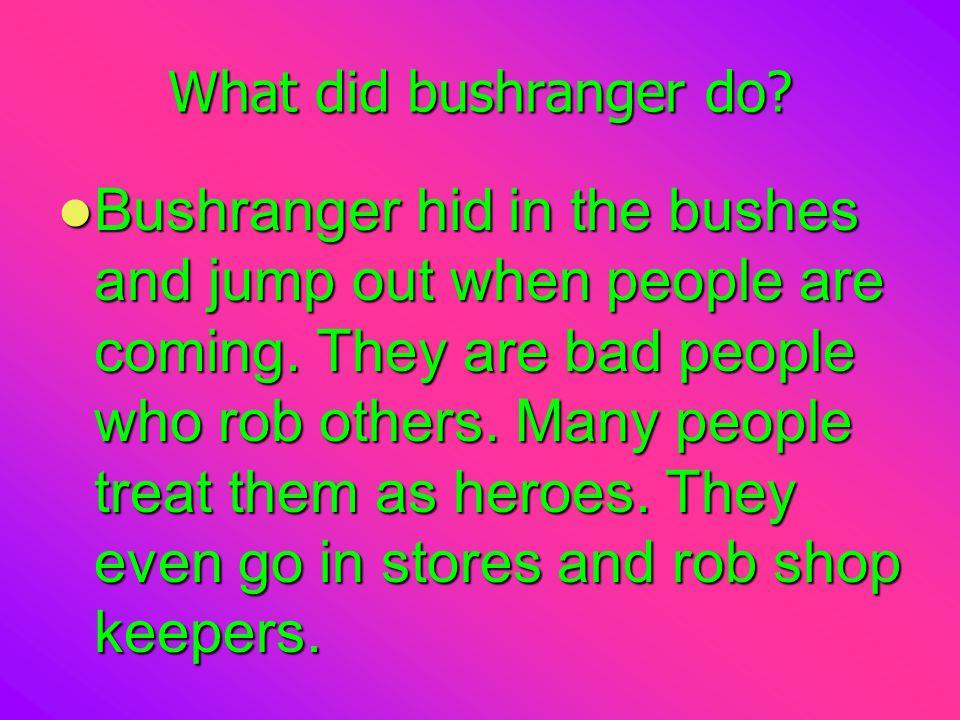 What did bushranger do