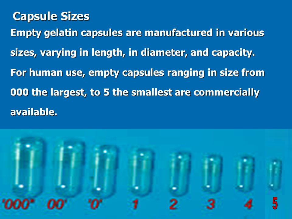 capsule size - Hunt.hankk.co