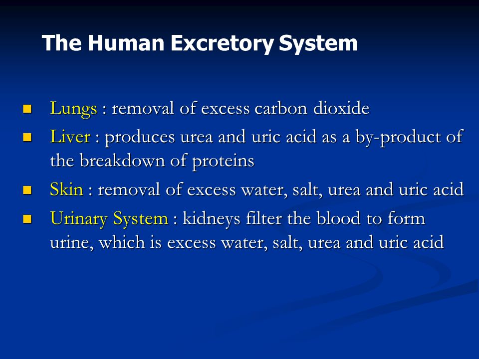 Carbon Dioxide Removal Systems : Excretion is the removal of waste products