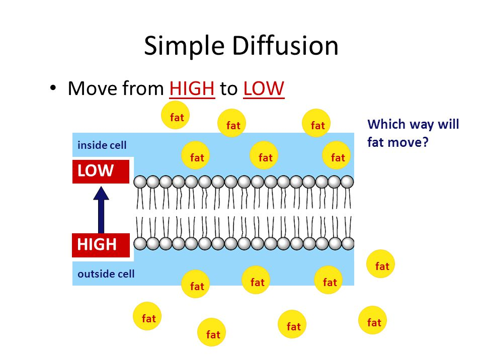 Simple Diffusion Move from HIGH to LOW LOW HIGH
