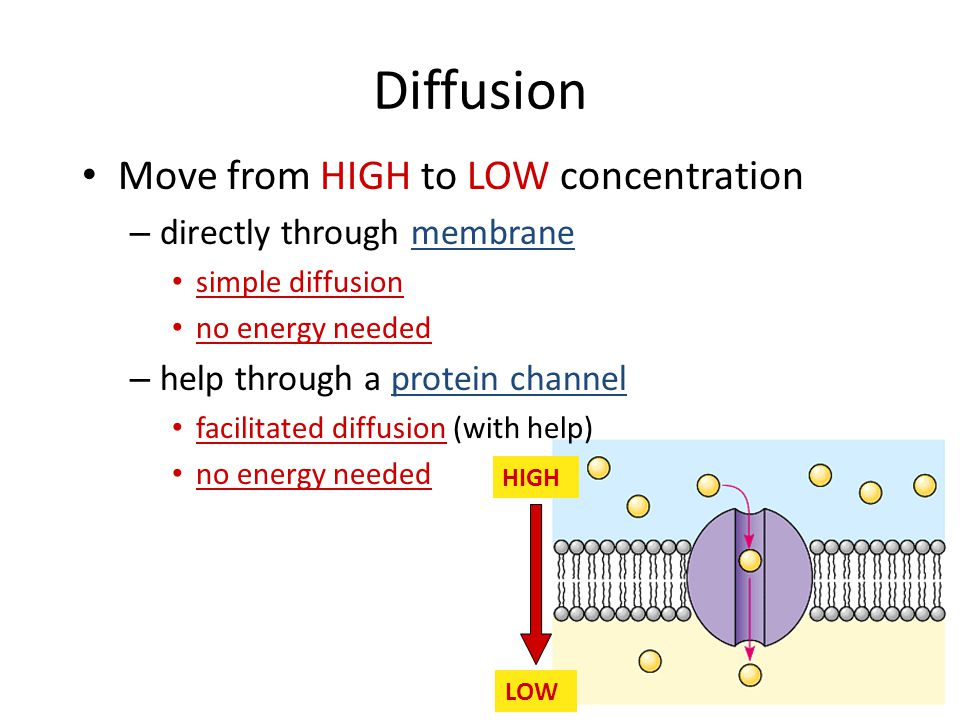 Diffusion Move from HIGH to LOW concentration
