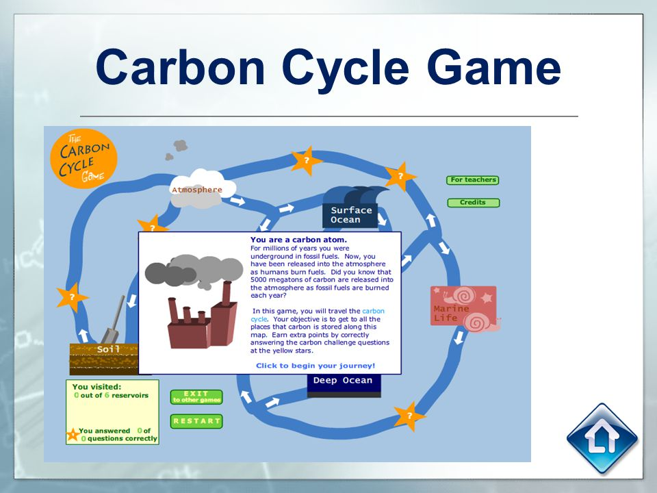 Carbon cycle story