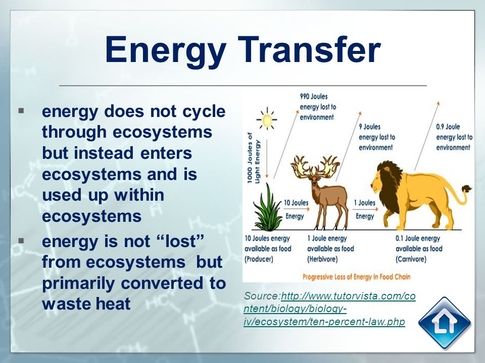 Energy Transfer Energy Does Not Cycle Through Ecosystems But Instead Enters Ecosystems And Is Used Up Within Ecosystems on Food Chain Energy Flow Through