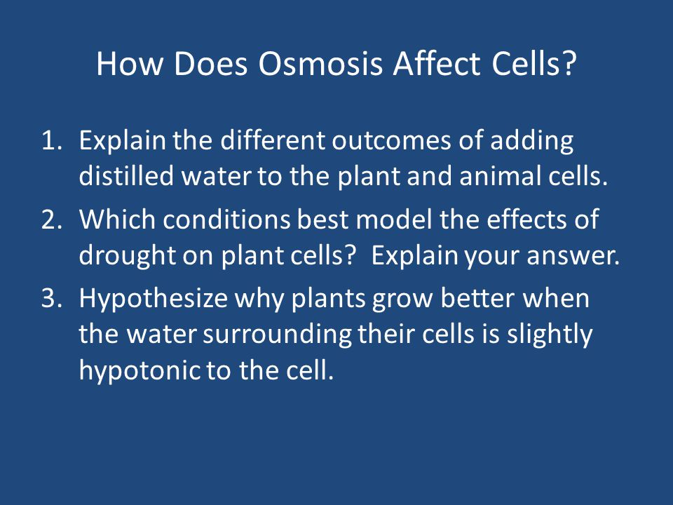How Does Osmosis Affect Cells
