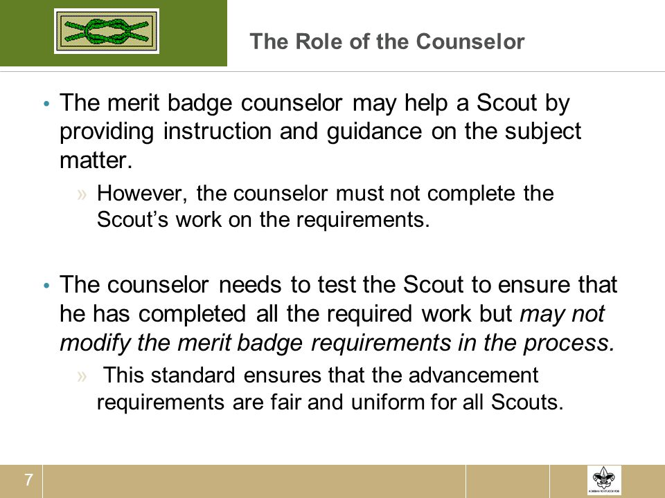 The Role of the Counselor
