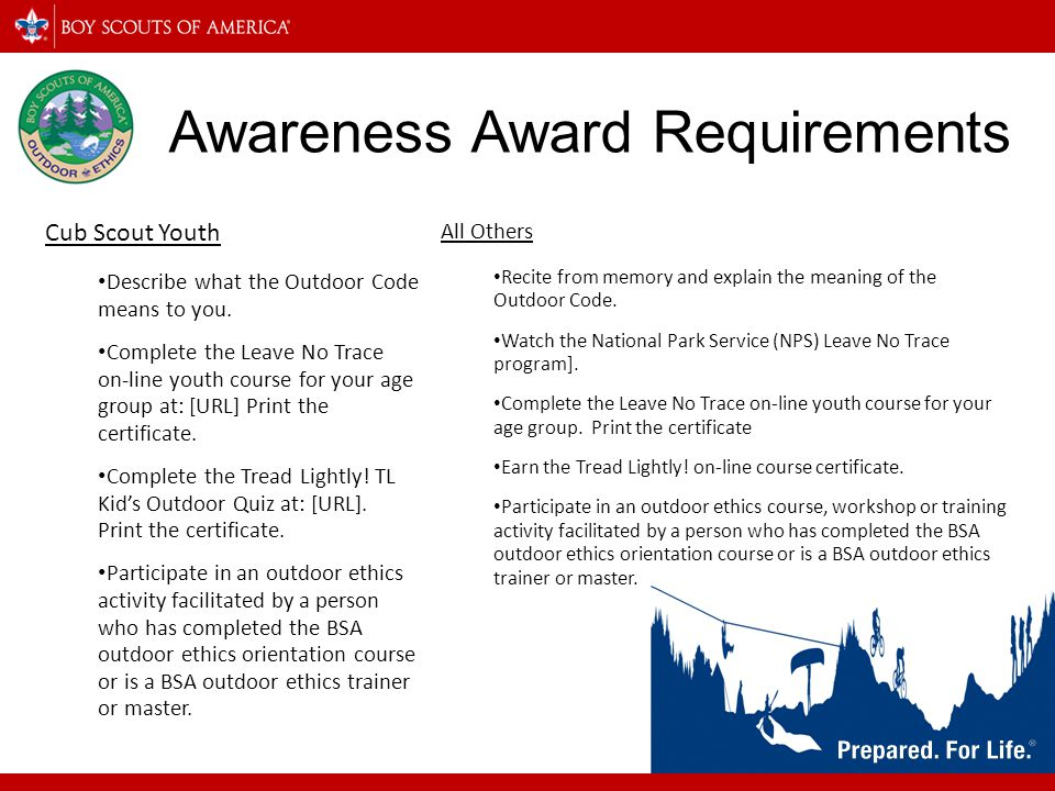Awareness Award Requirements