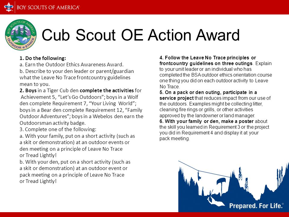 Cub Scout OE Action Award