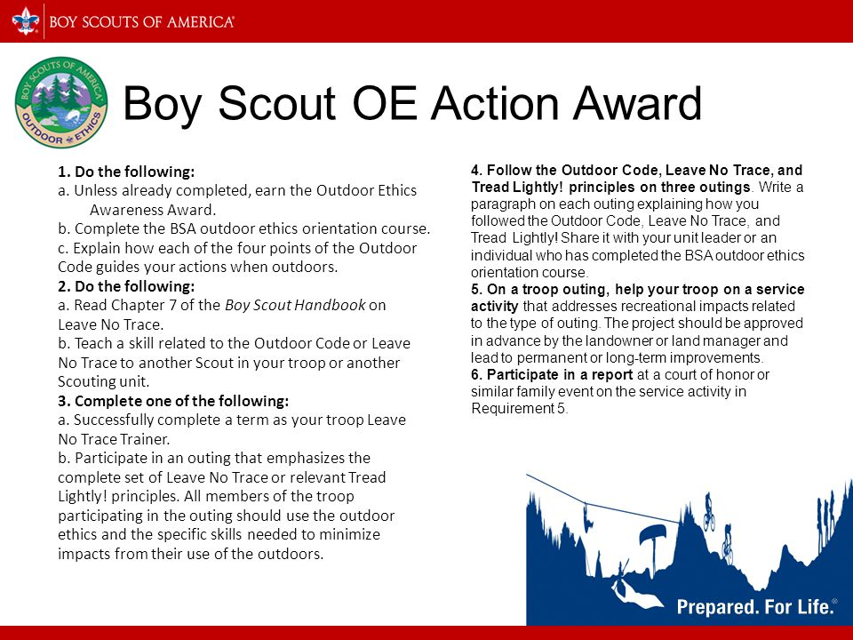 Boy Scout OE Action Award