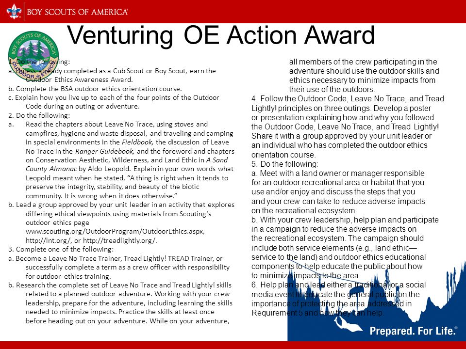 Venturing OE Action Award