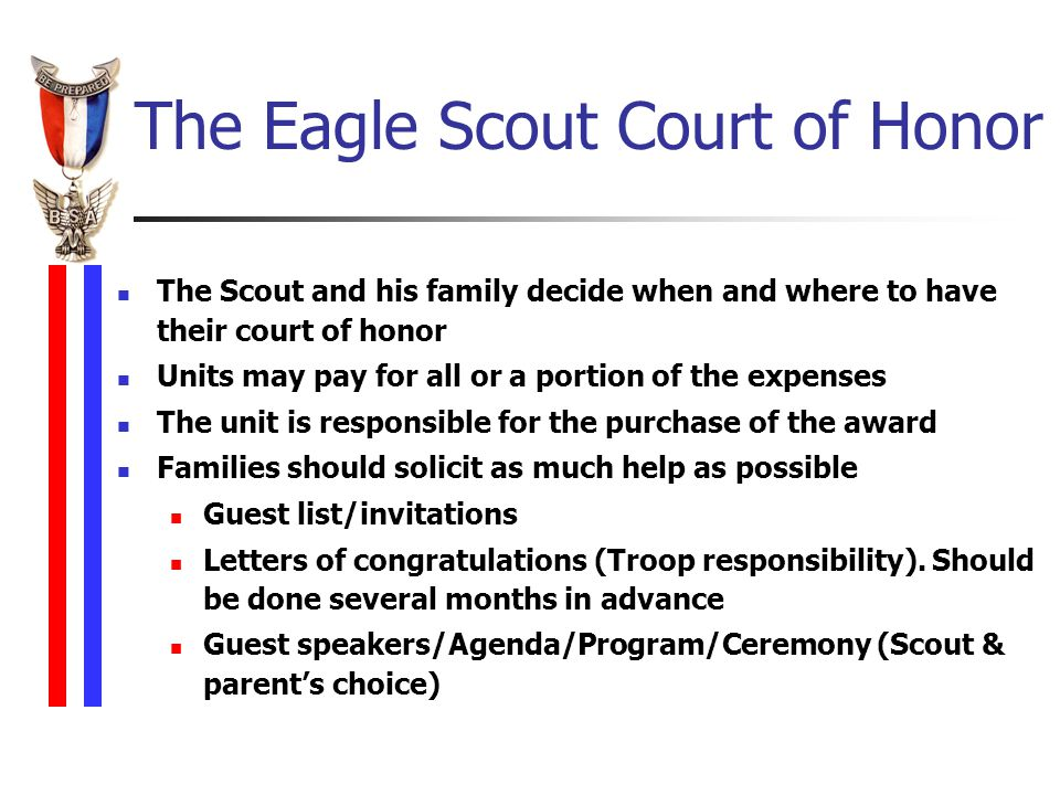 Eagle scout award ceremonies national eagle scout pdf download board of commissioenrs 200910 pike county times altavistaventures Images