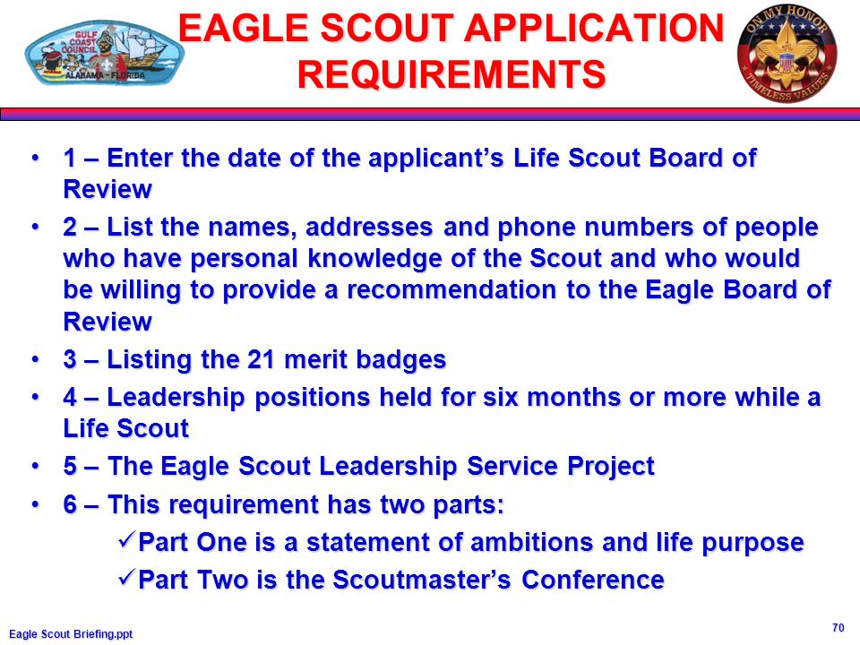eagle scout project application
