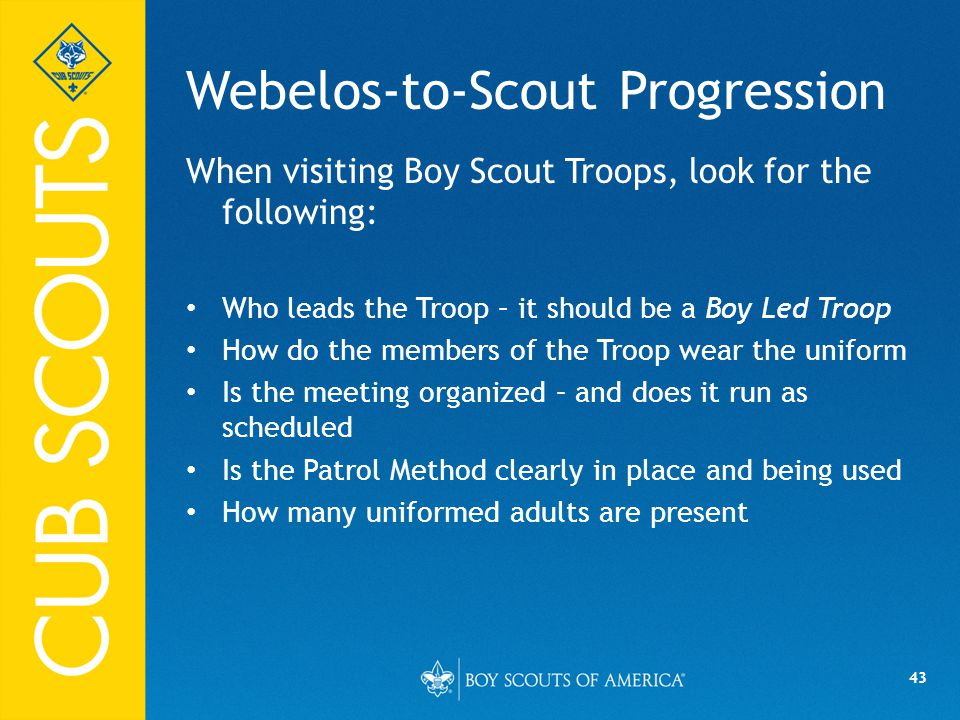 Webelos-to-Scout Progression