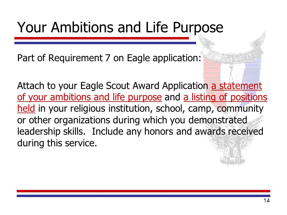 eagle life purpose essay Eagle scoutmaster conference  of your ambitions and life purpose with a listing of  originals of the eagle project workbook, application and essay.