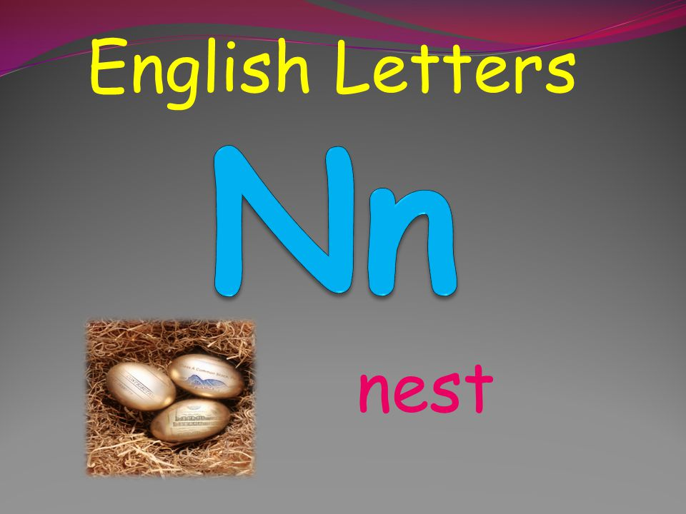 English Letters Nn nest