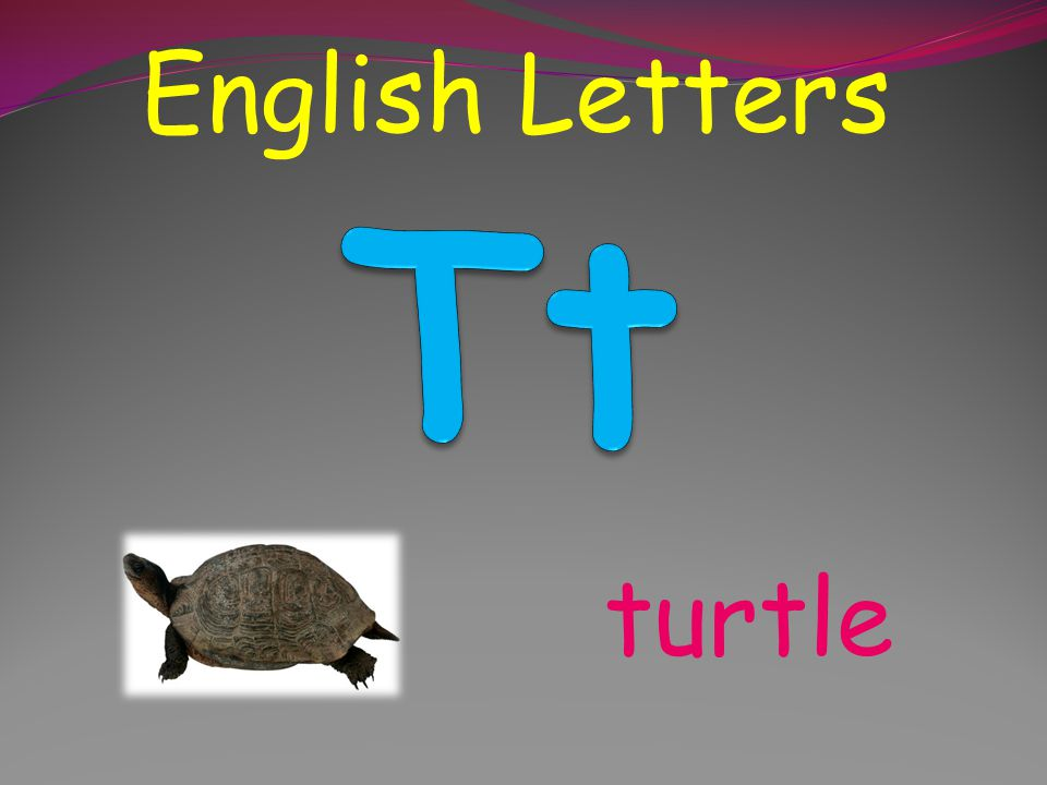 English Letters Tt turtle