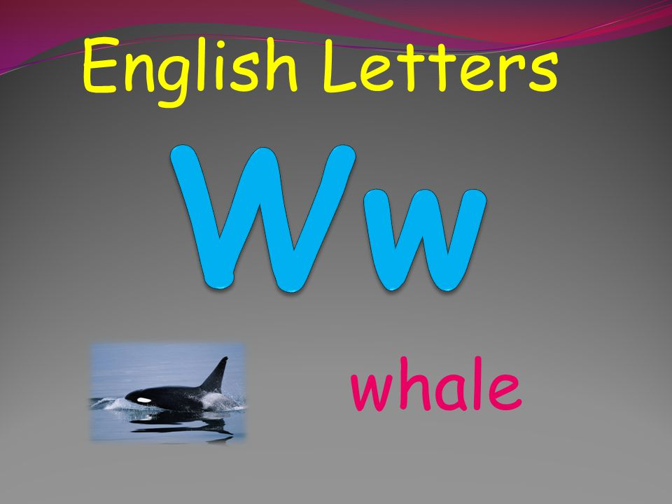 English Letters Ww whale