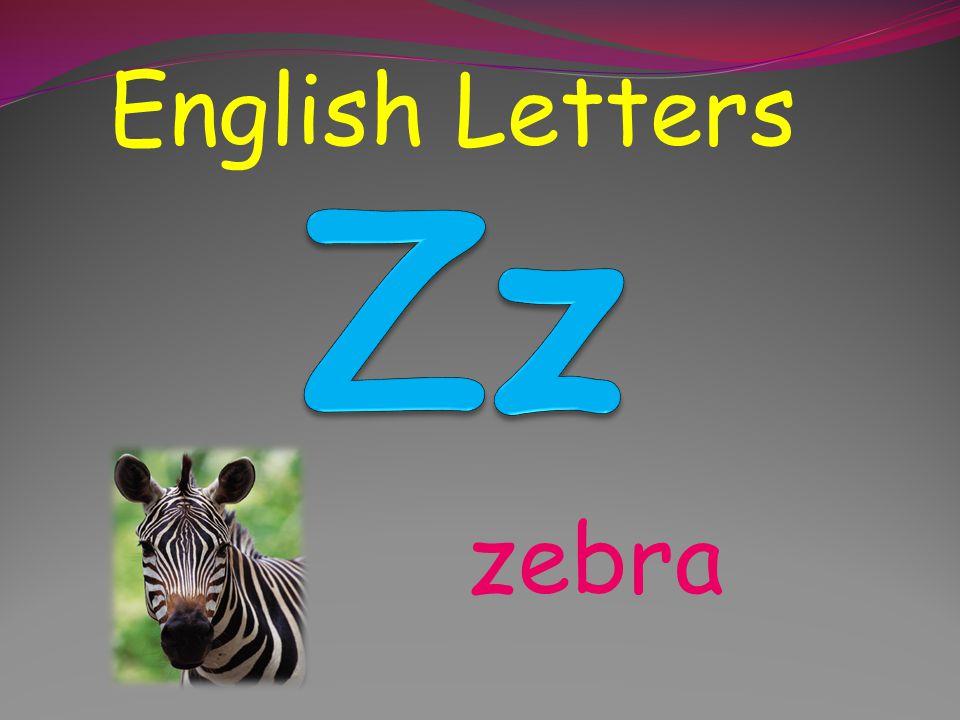 English Letters Zz zebra