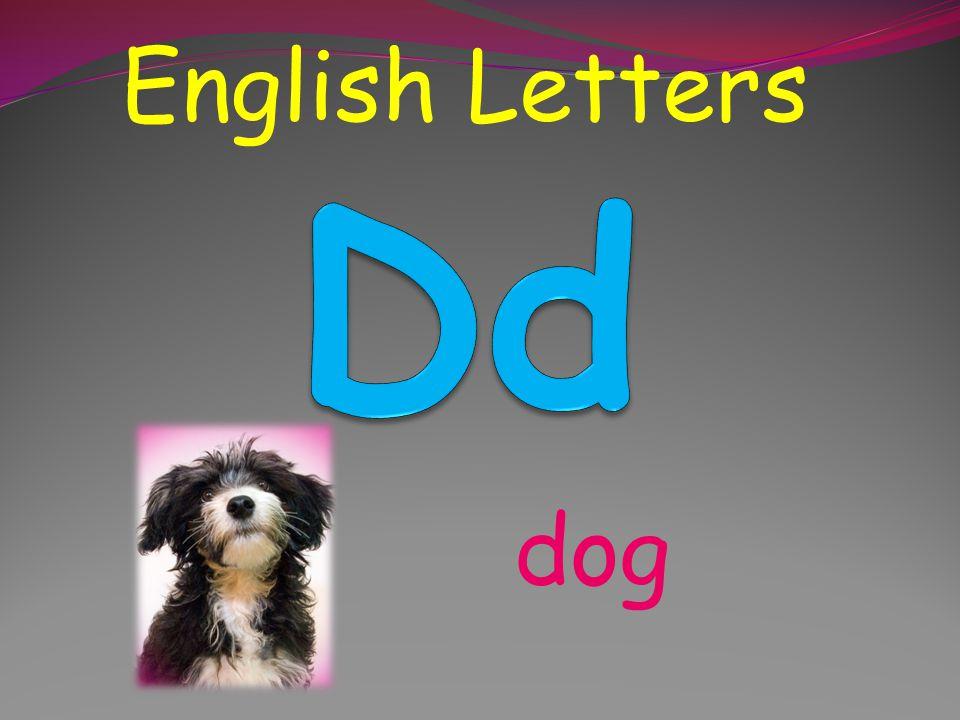 English Letters Dd dog