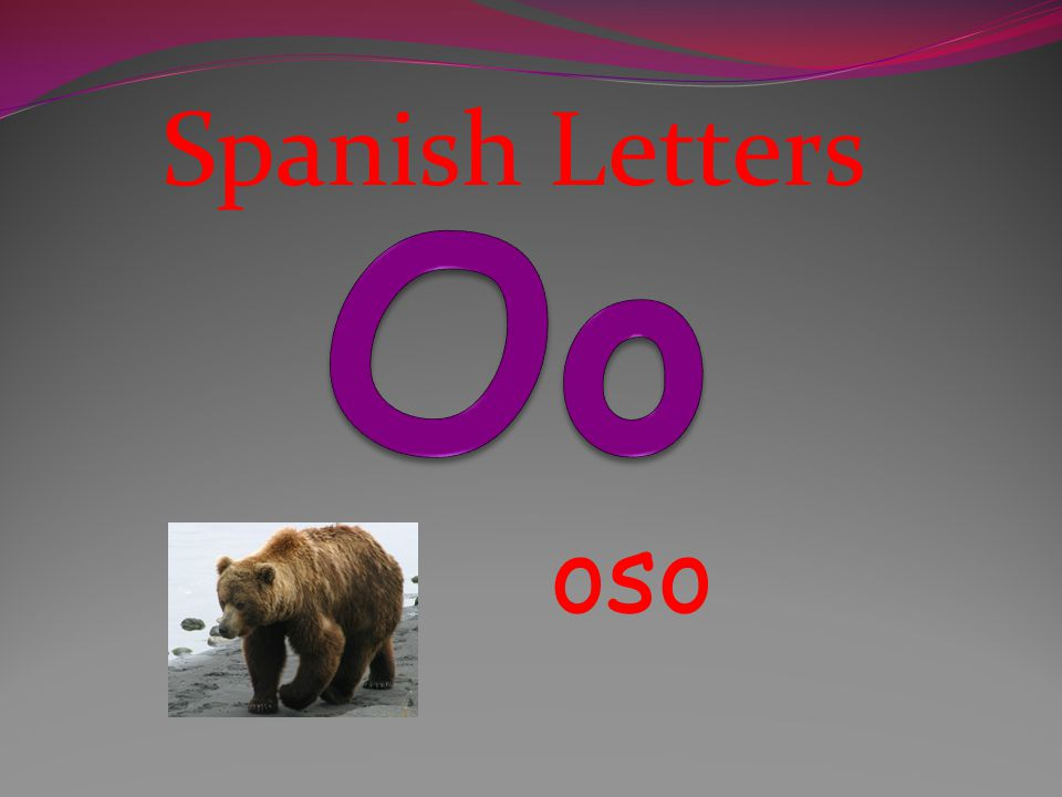 Spanish Letters Oo oso