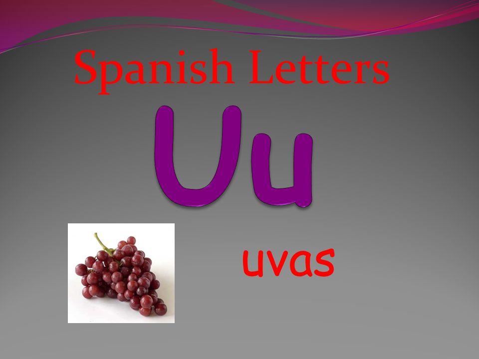 Spanish Letters Uu uvas