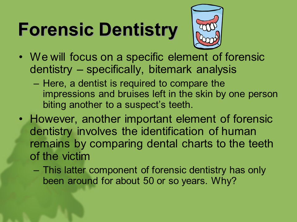 Forensic Dentistry We Will Focus On A Specific Element Of Forensic Dentistry Specifically Bitemark Analysis Here A Dentist Is Required To Compare The Ppt Video Online Download