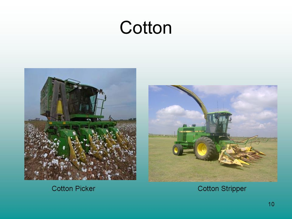 Cotton Cotton Picker Cotton Stripper