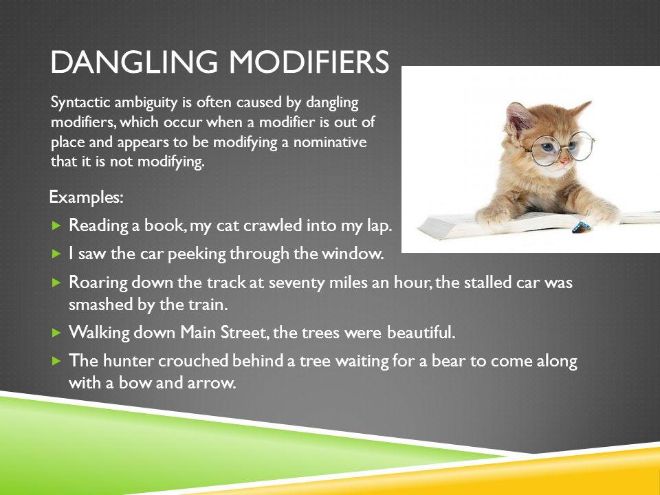 Modifying Your Car For Dog Walking