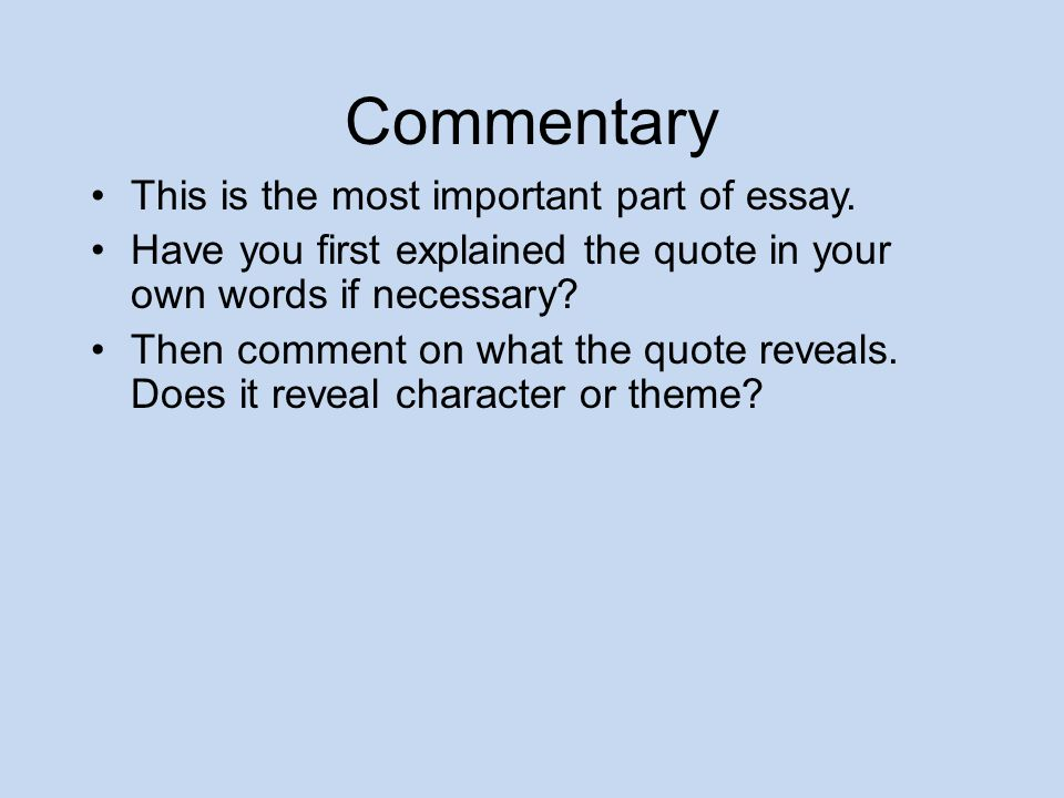 self edit for the bean trees essay ppt  commentary this is the most important part of essay