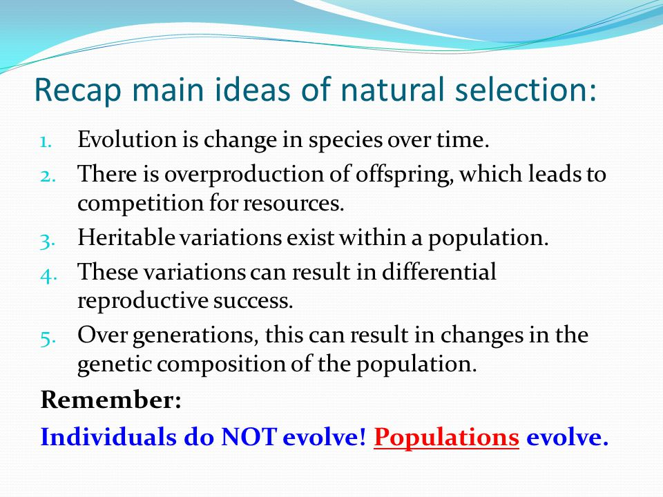 Compare Artificial And Natural Selection