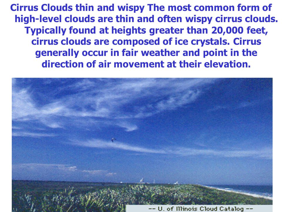 Cirrus Clouds thin and wispy The most common form of high-level clouds are thin and often wispy cirrus clouds.