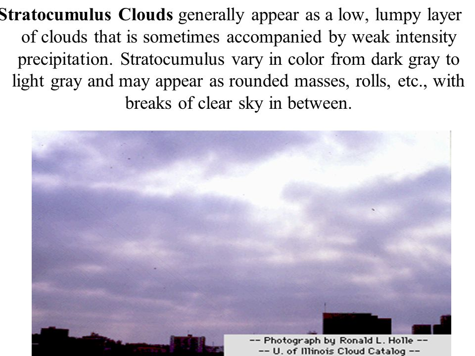 Stratocumulus Clouds generally appear as a low, lumpy layer of clouds that is sometimes accompanied by weak intensity precipitation.