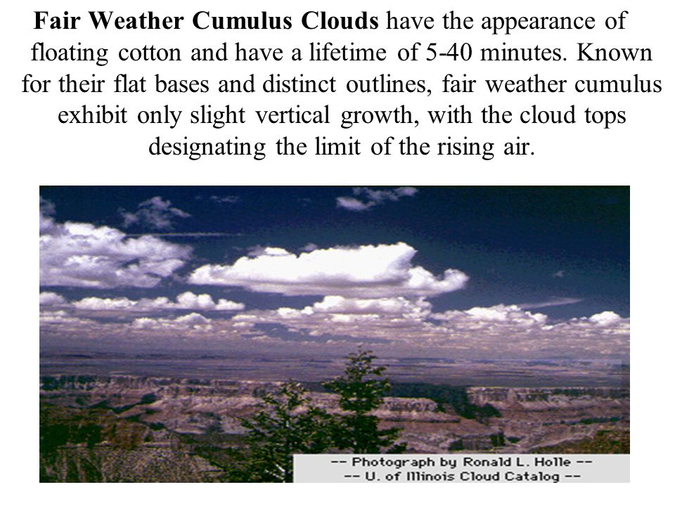 Fair Weather Cumulus Clouds have the appearance of floating cotton and have a lifetime of 5-40 minutes.