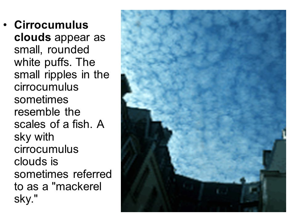 Cirrocumulus clouds appear as small, rounded white puffs