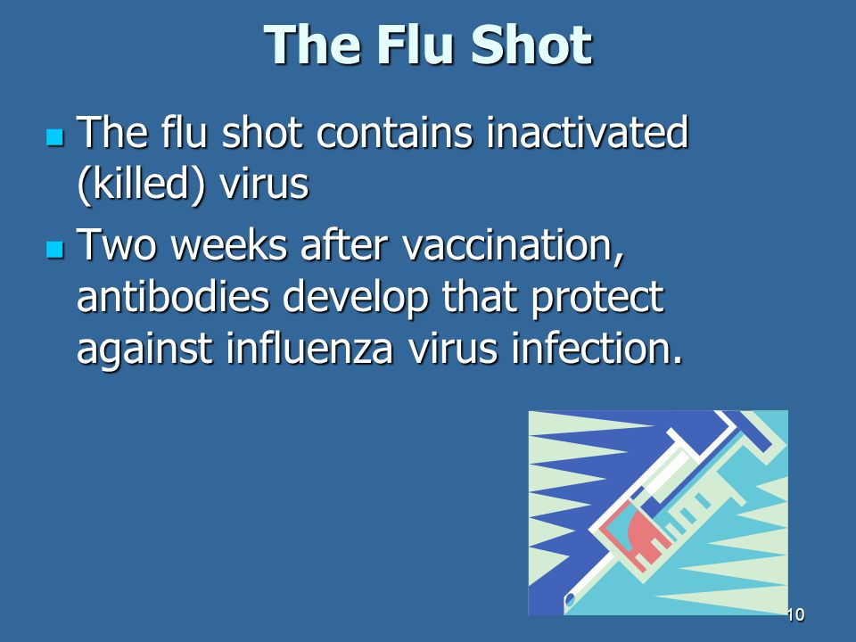 The Flu Shot The flu shot contains inactivated (killed) virus