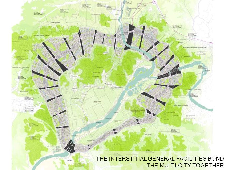 THE INTERSTITIAL GENERAL FACILITIES BOND THE MULTI-CITY TOGETHER