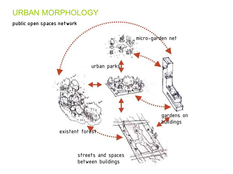URBAN MORPHOLOGY public open spaces network