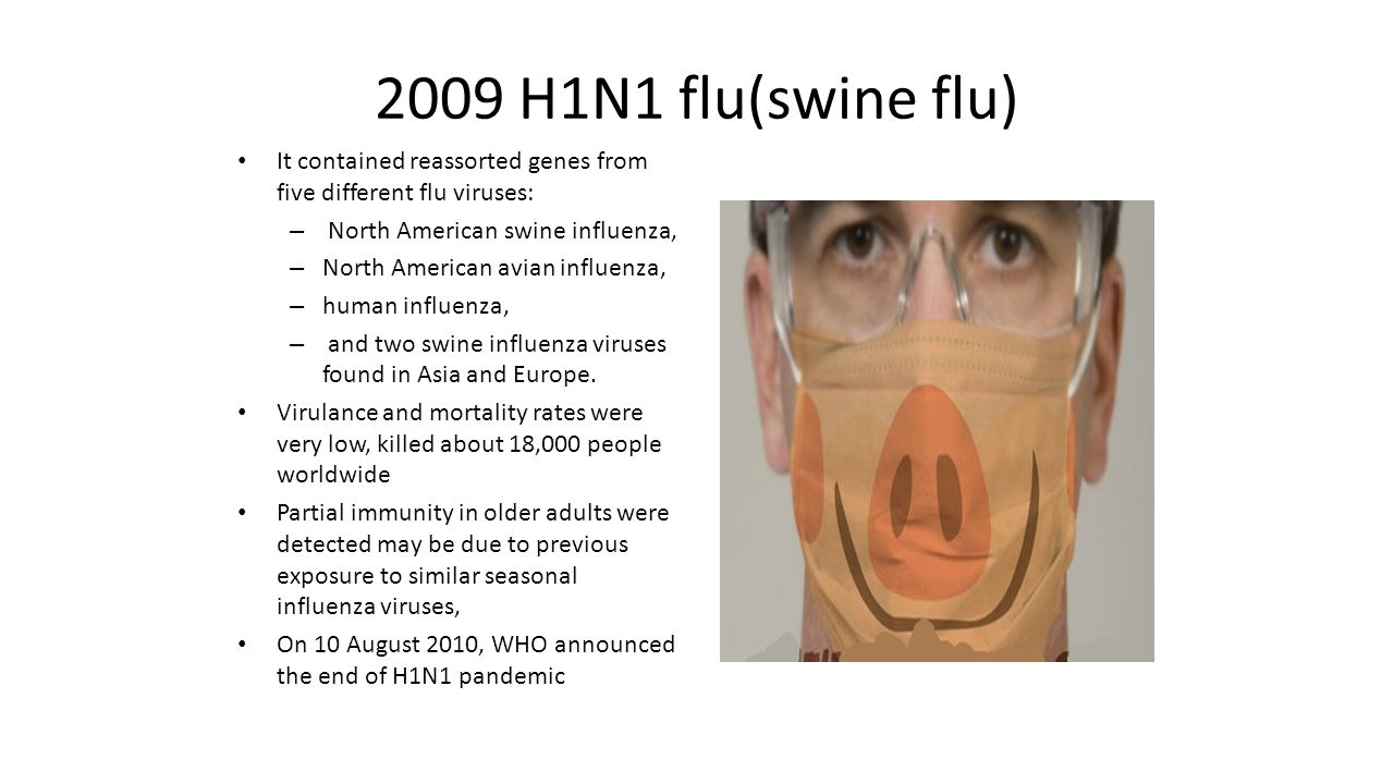essay on swine flu 2009 Get an answer for 'i am writing an essay on swine flu (h1n1)can you help me construct an essay on swine flu' and find homework help for other essay lab questions at.