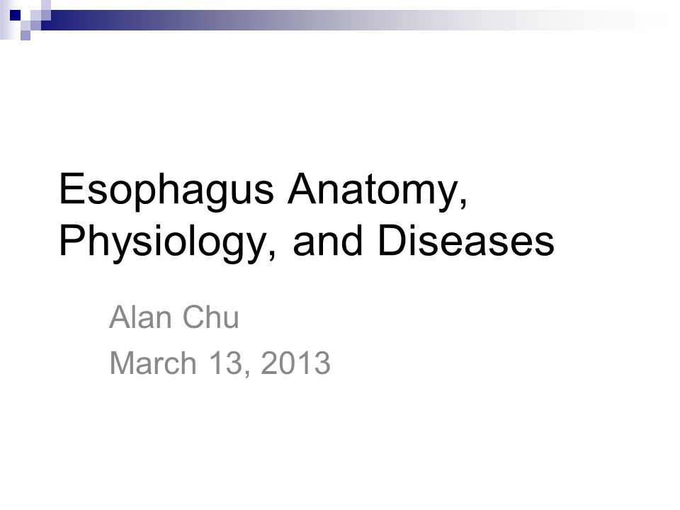 Magnificent Anatomy Physiology And Disease Composition - Anatomy And ...