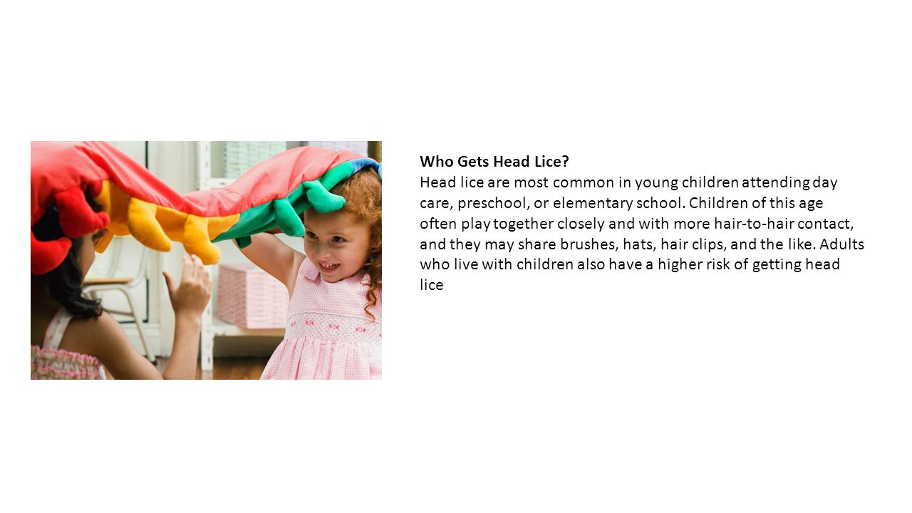 how to keep from getting head lice
