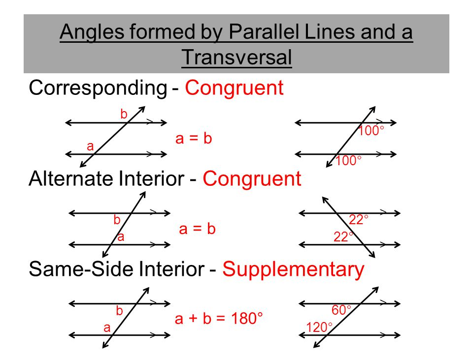 Angles Formed By Parallel Lines And Transversals Worksheet 893984. Angles Formed By Parallel Lines And Transversals Worksheet. Worksheet. Parallel Lines And Transversals Worksheet At Mspartners.co