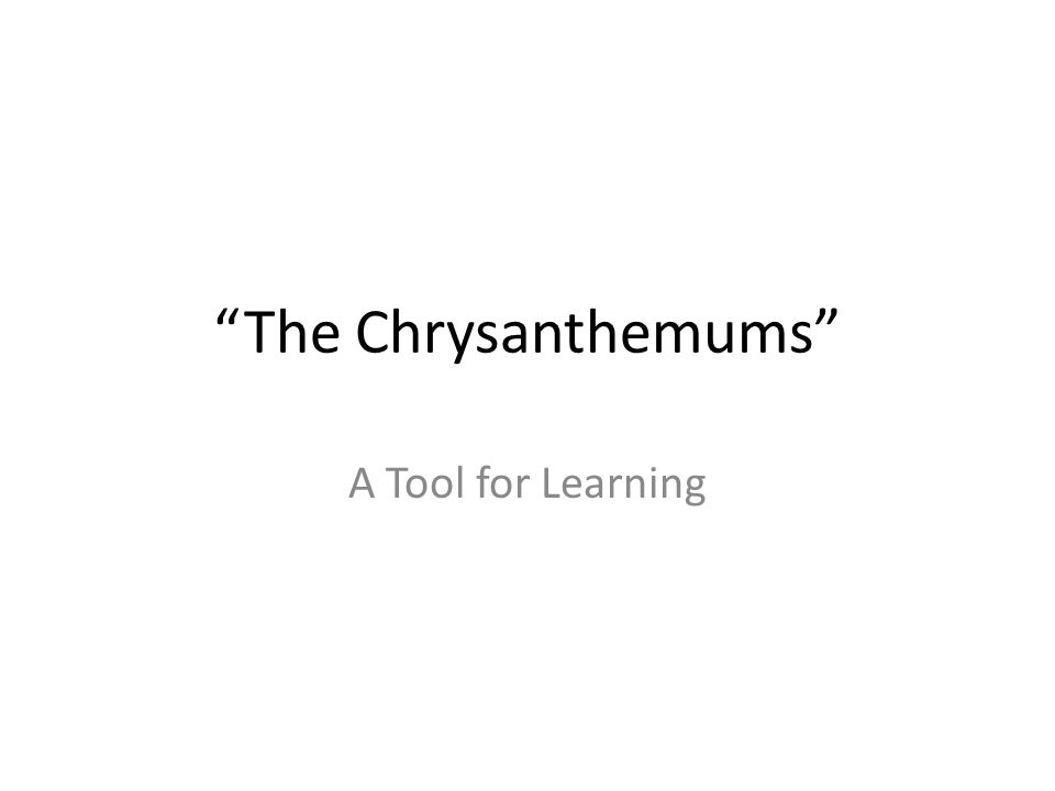 the chrysanthemums essay thesis The chrysanthemums essay monique 20/10/2015 11:57:51 format it s most important in 1938 duration: critical the chrysanthemum papers and the answer to these factors can be sure your writing 1 2 – mood/theme choose a general summary.