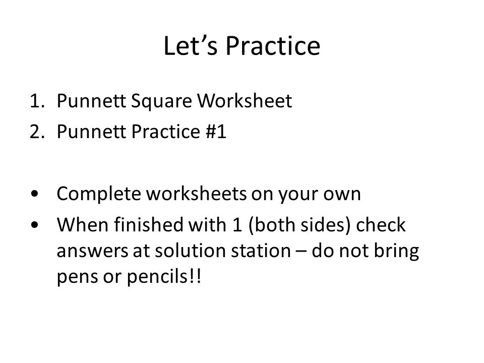 Warm Up Put bug lab on desk to be collected turn in drawing and – Punnett Square Worksheet Answers