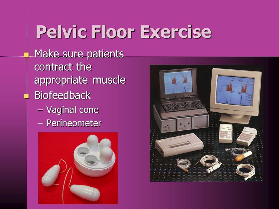 Pelvic Floor Muscles Pelvic Floor Muscles Biofeedback