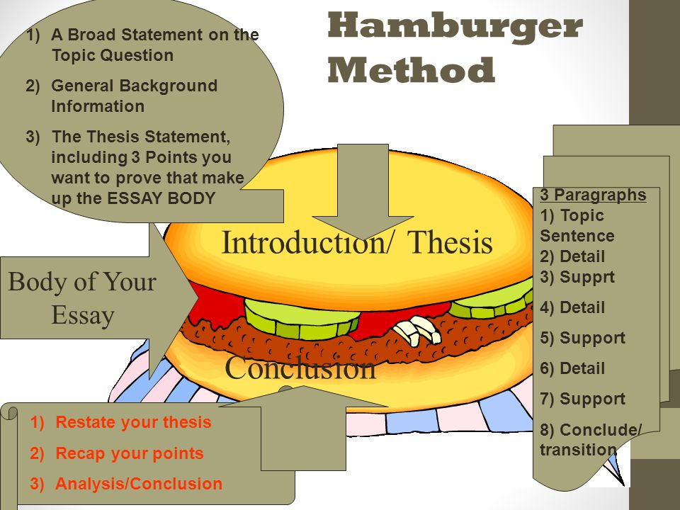 essay writing hamburger helper style ppt video online  16 hamburger