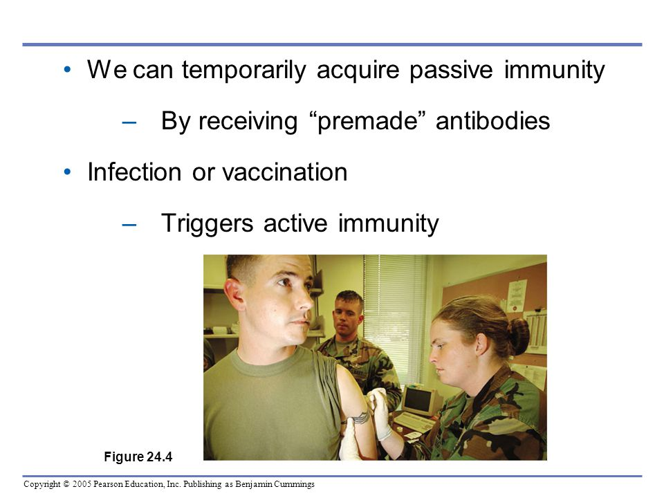 We can temporarily acquire passive immunity
