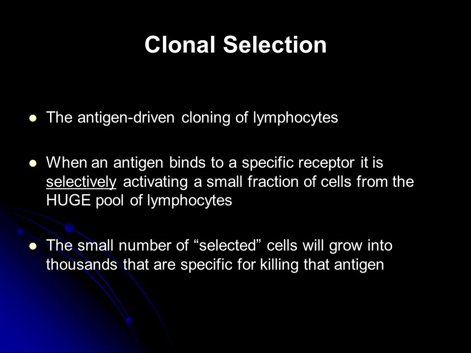 Clonal Selection The antigen-driven cloning of lymphocytes